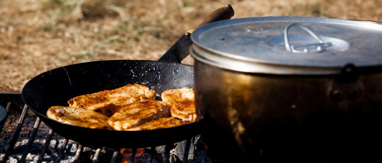 Økologisk mad på lejren